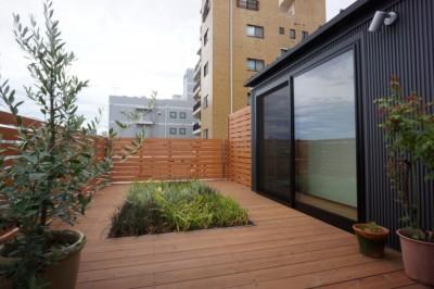 屋上庭園 (江古田の家 ―夫婦で趣味を楽しむ)