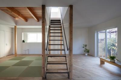 階段 (新石川戸建リノベーションPJ)