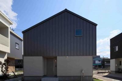 外観 (洗練された「北欧デザイン」の家。性能もデザインも規格型住宅『TRETTIO』で解決。)