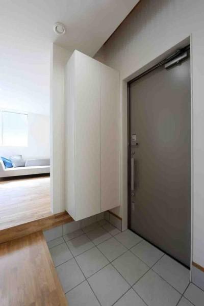 玄関 (洗練された「北欧デザイン」の家。性能もデザインも規格型住宅『TRETTIO』で解決。)