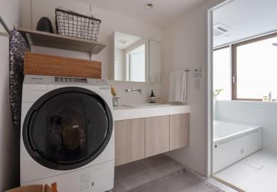 洗面室 (パリのアパルトマン)
