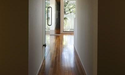 木漏れ日のワイドリビング (廊下)