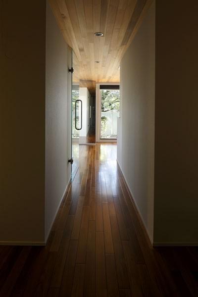 廊下 (木漏れ日のワイドリビング)