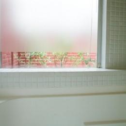 浅草の家―2階にある庭 (浴室から屋上庭園を眺める)