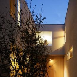 二世帯の生活を中庭が繋ぐ( 大東の家 ) (外観夜景)