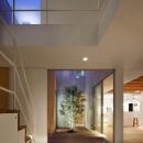 二世帯の生活を中庭が繋ぐ( 大東の家 )の写真 玄関夜景