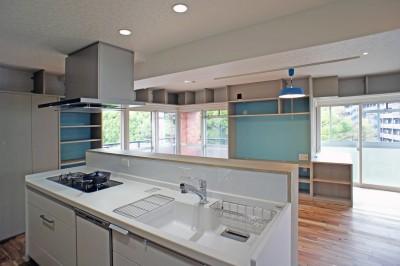 カグ ノ モリ - 壁面全面造作家具のリノベーション - (キッチンからの眺め)