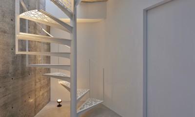 地上に浮いた地下の家 -高密度商業地域に立つRC3階建ガレージハウス- (木漏れ日螺旋階段)
