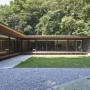 稲村ヶ崎の住宅 - 建物と自然からうまれる平屋中庭住宅 -の写真 中庭からの眺め