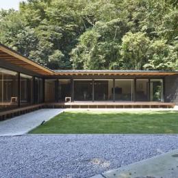 稲村ヶ崎の住宅 - 建物と自然からうまれる平屋中庭住宅 - (中庭からの眺め)