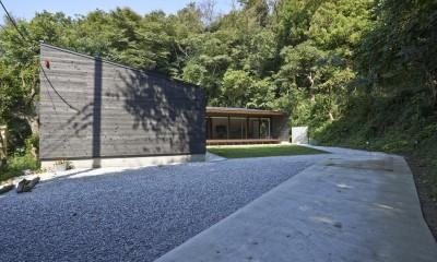稲村ヶ崎の住宅 - 建物と自然からうまれる平屋中庭住宅 -