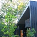 富士山麓の別荘 カラマツ林の傾斜地に建つ別荘の写真 建物外観