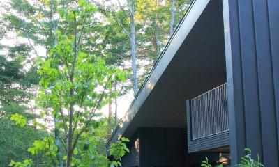 富士山麓の別荘 カラマツ林の傾斜地に建つ別荘 (建物外観)
