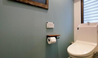 二世帯住居を単世帯にリノベーション (落ち着いた壁色のトイレ)