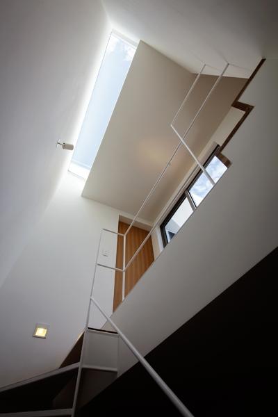 樽町の家の写真 階段
