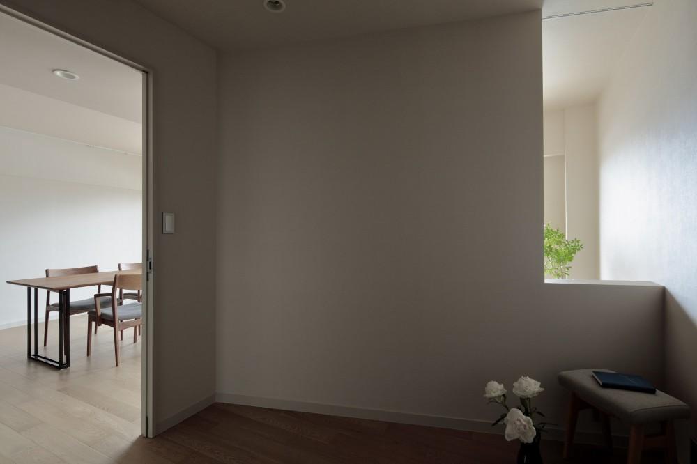白金台N邸  光を取り込む斜めリビングの家 (リビング越しに入る穏やかな光)