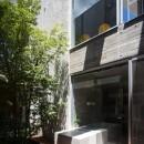 清水の家の写真 中庭