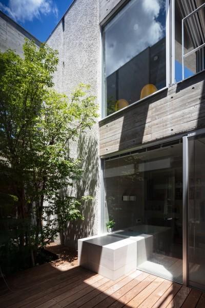 清水の家 (中庭)
