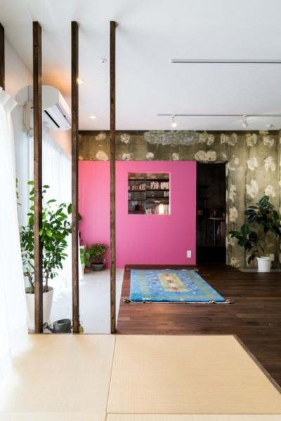 ピンクの壁が映えるリビング (植物と書道家とルイスバラガンと)