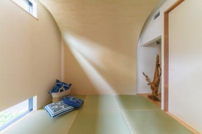 自然な光が差し込む和室 (降り注ぐ家)