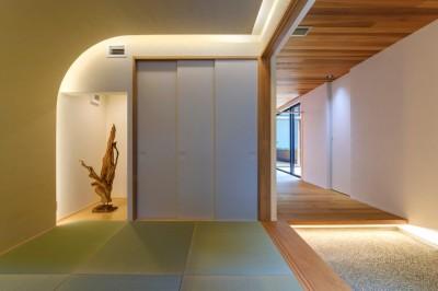 アールの壁と間接照明を使ったデザイン (降り注ぐ家)