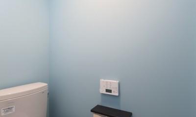 窓をなくして光を呼び込む。逆転の発想で密集地でも開放感いっぱいに暮らせる家 (トイレ)