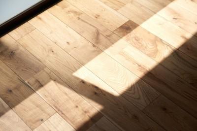 駅から直結 澄み渡る角部屋 (無垢床)