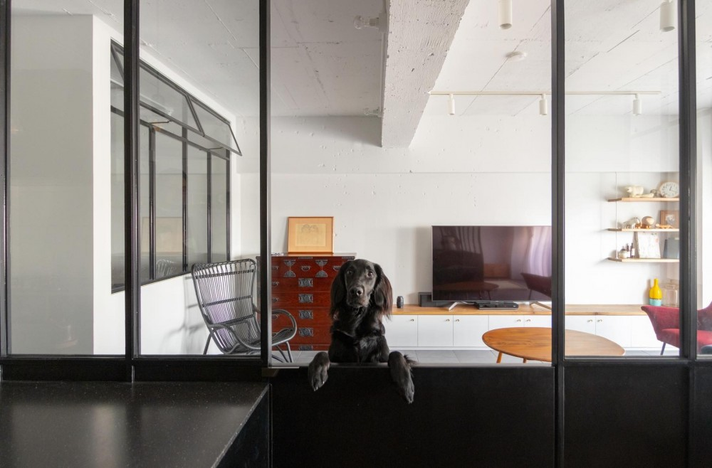 愛犬ファーストな家 (ダイニングから見たリビング)