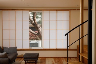 松の木ハウス (松の木)