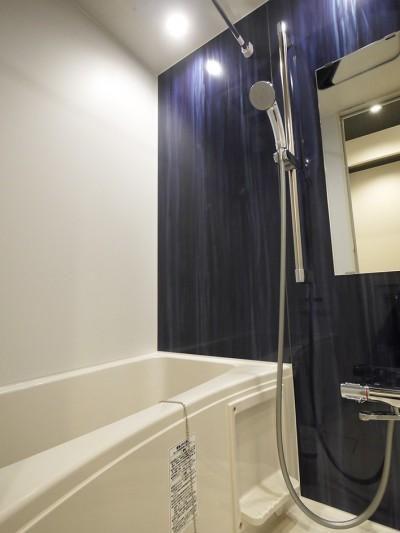 浴室 (ユーズド感ある1DK)