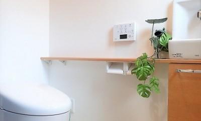 小屋裏収納付きモダンテイストなお家 (トイレ)