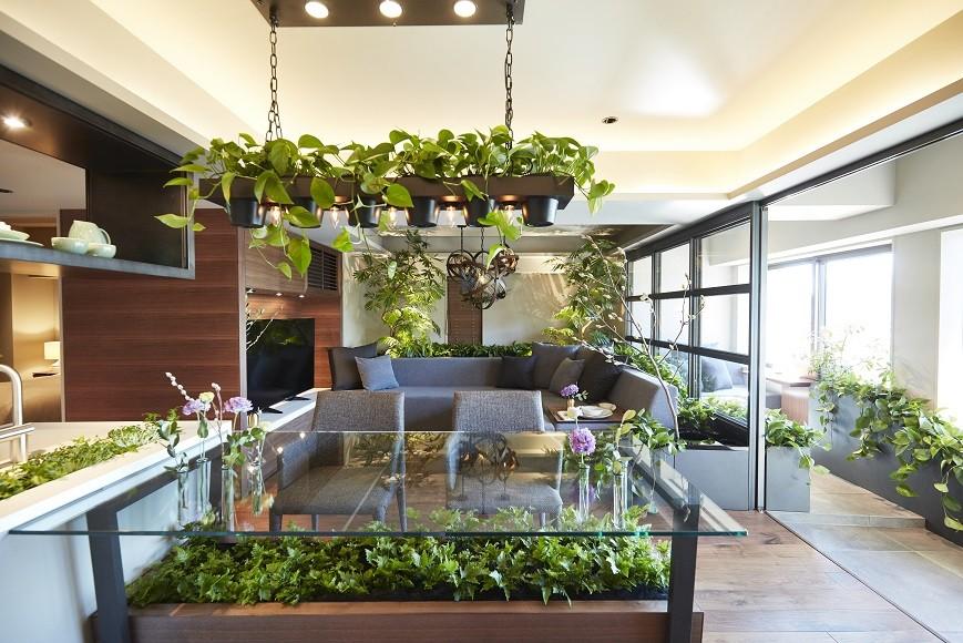 リビング (「GREEN DAYS」リノベーション×室内緑化で、理想の住まいを形にしていく)