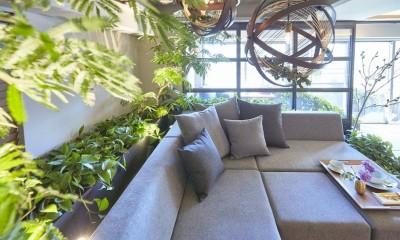 「GREEN DAYS」リノベーション×室内緑化で、理想の住まいを形にしていく (リビング)