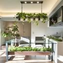 「GREEN DAYS」リノベーション×室内緑化で、理想の住まいを形にしていくの写真 ダイニング