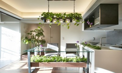 「GREEN DAYS」リノベーション×室内緑化で、理想の住まいを形にしていく (ダイニング)