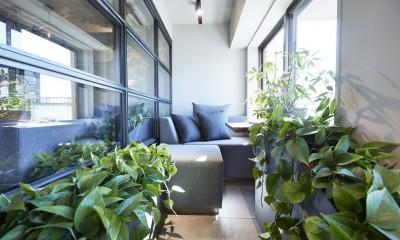 「GREEN DAYS」リノベーション×室内緑化で、理想の住まいを形にしていく (テラス)