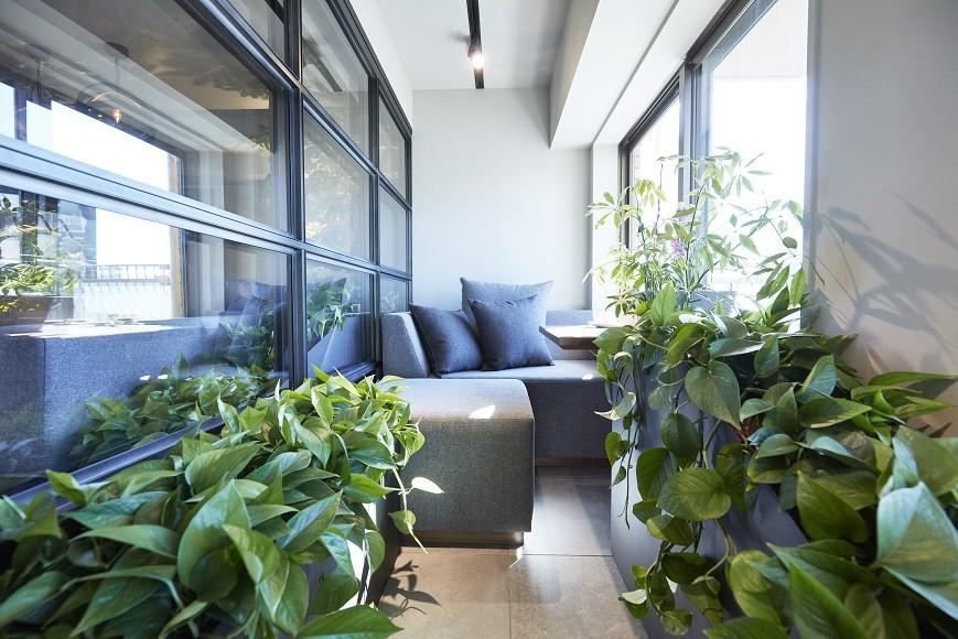 マイリノbyグローバルベイス「「GREEN DAYS」リノベーション×室内緑化で、理想の住まいを形にしていく」