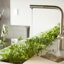 「GREEN DAYS」リノベーション×室内緑化で、理想の住まいを形にしていく