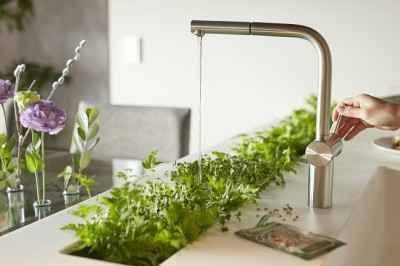 キッチン (「GREEN DAYS」リノベーション×室内緑化で、理想の住まいを形にしていく)