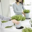 「GREEN DAYS」リノベーション×室内緑化で、理想の住まいを形にしていくの写真 室内菜園コーナー