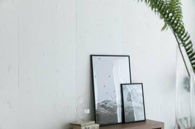 建築家の好む家 (壁材)
