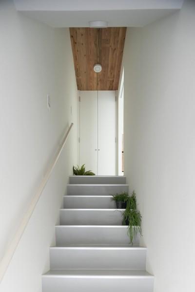 建築家の好む家 (玄関)
