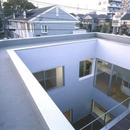 橋本の住宅 (中庭)