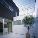 渋谷の住宅の写真 中庭