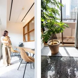 日差しを部屋中に届けるインナーテラスと室内窓 (ワークスペース兼インナーテラス)