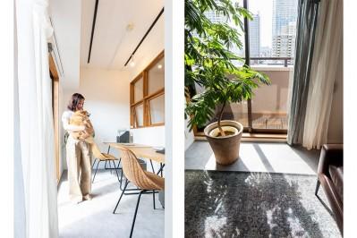 ワークスペース兼インナーテラス (日差しを部屋中に届けるインナーテラスと室内窓)