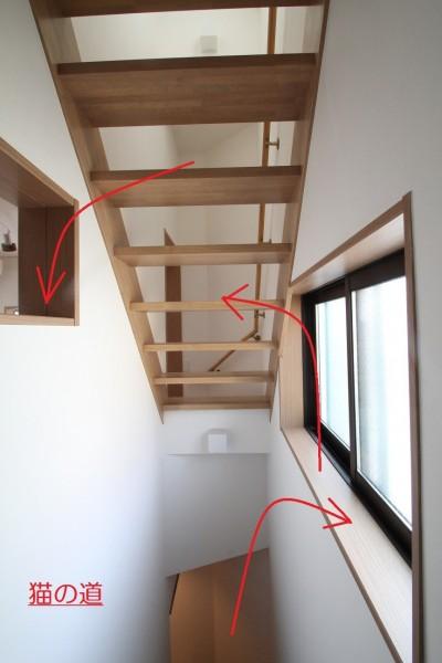 階段 (猫と暮らす!都心のリノベーション狭小住宅)