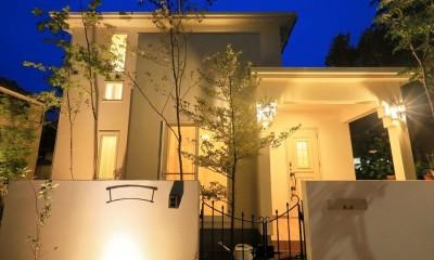 キャットウォークと大型吹抜けのある家 (外観 夜景)