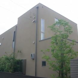 三つの陸屋根を持つコートハウス