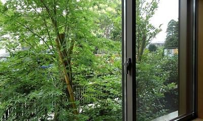和室からの眺め|三つの陸屋根を持つコートハウス